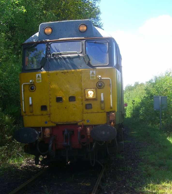 Unusual shot of 31452 taken at the groundframe south of Okehampton Station, whilst carrying out brake checks before departing for Derby. The rail grinder is out of sight behind the locomotive.